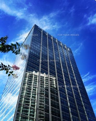 高層ビルの写真素材 [FYI00545326]