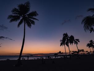 ハワイ オアフ島 ホノルル ワイキキ ビーチ サンセットの写真素材 [FYI00545470]