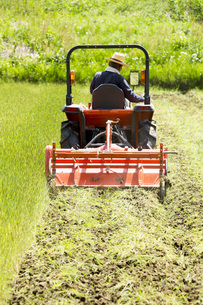 耕運機で耕す農地の写真素材 [FYI00545539]