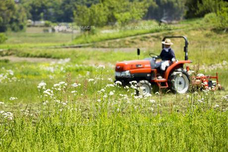 耕運機で耕す農地の写真素材 [FYI00545540]