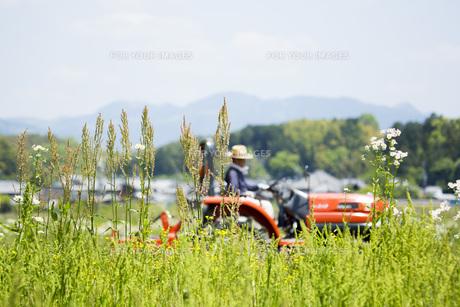 耕運機で耕す農地の写真素材 [FYI00545550]