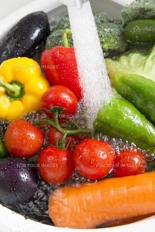 システムキッチンでの野菜の水洗いの写真素材 [FYI00545614]