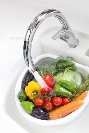 野菜の水洗いの写真素材 [FYI00545619]
