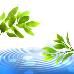 新緑 若葉 エコ 水面のイラスト素材 [FYI00545668]