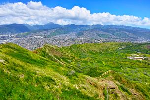 ハワイの風景の写真素材 [FYI00546969]