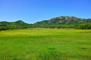 ハワイの風景の写真素材 [FYI00546970]