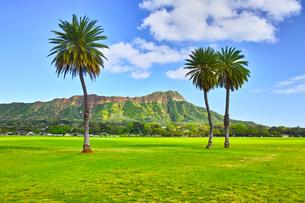 ハワイの風景の写真素材 [FYI00546975]