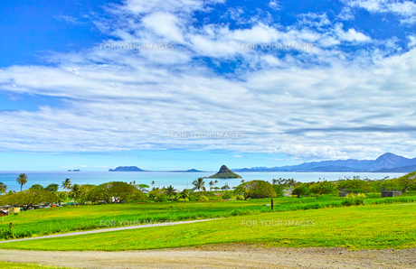 ハワイ東海岸の風景の写真素材 [FYI00546976]