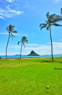 ハワイ東海岸の風景の写真素材 [FYI00546977]