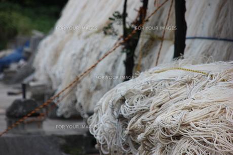 漁港の網干の写真素材 [FYI00547172]