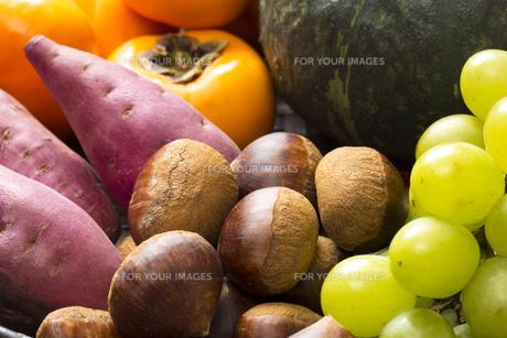 あきの食材集合の写真素材 [FYI00547491]