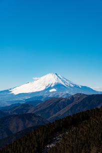 初冬の富士山の写真素材 [FYI00549506]