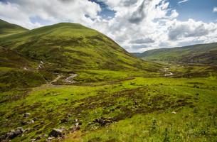 highlandsの素材 [FYI00549966]