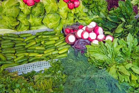 vegetableの素材 [FYI00550486]