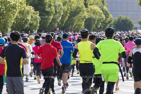 市民マラソンの写真素材 [FYI00551738]