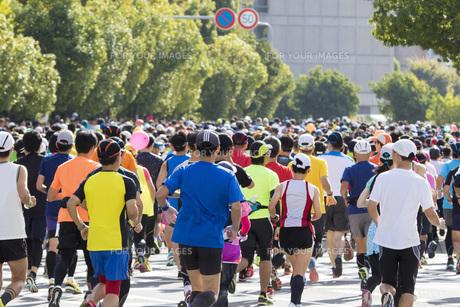 市民マラソンの写真素材 [FYI00551739]