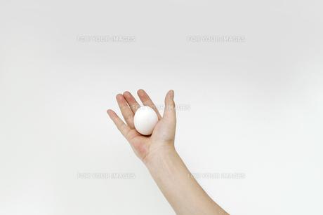 白い卵を持つ男性の手の写真素材 [FYI00551782]