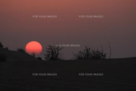 砂漠の夕景の写真素材 [FYI00551820]