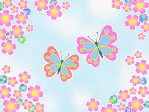 桜の花と蝶のイラスト素材 [FYI00551853]