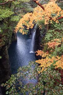 真名井の滝 - 日本のパワースポット、高千穂峡の写真素材 [FYI00551881]
