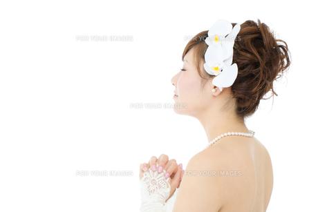 ウエディングドレス白背景の写真素材 [FYI00558844]