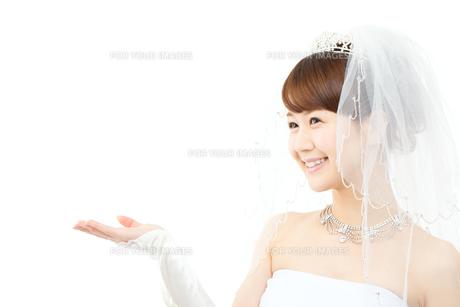 ウエディングドレスの女性の写真素材 [FYI00558979]