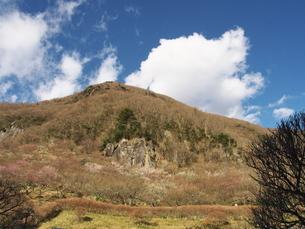 幕山公園 湯河原の写真素材 [FYI00559952]