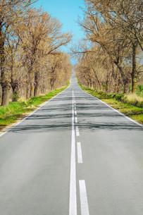 roadの素材 [FYI00563850]