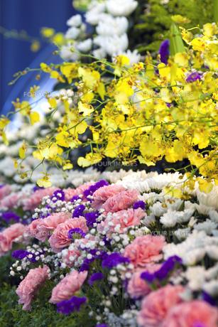 告別式の飾り花の写真素材 [FYI00564836]