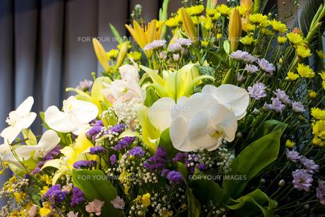 告別式の飾り花の写真素材 [FYI00564837]