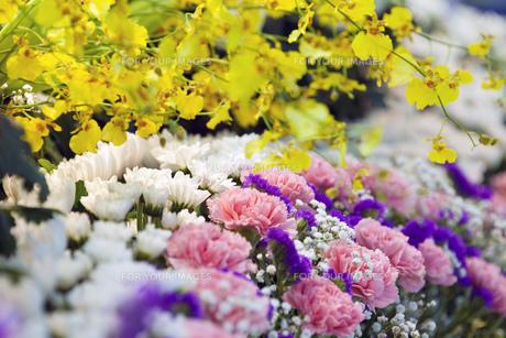 告別式の飾り花の写真素材 [FYI00564840]