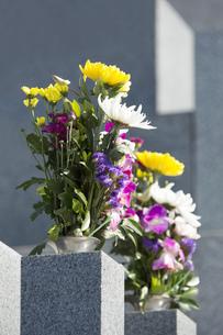 お墓参りの仏花の写真素材 [FYI00564844]