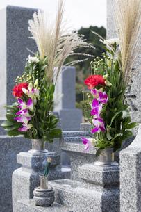 お墓参りの仏花の写真素材 [FYI00564847]