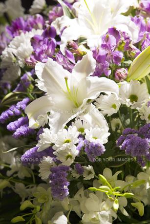 告別式の飾り花の写真素材 [FYI00564851]