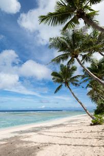 グアムのビーチの写真素材 [FYI00566761]