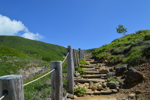 初夏 栗駒山の写真素材 [FYI00566913]