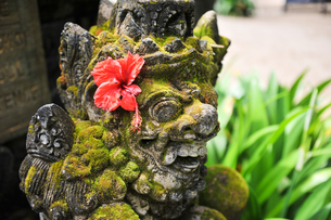バリ島の石像の写真素材 [FYI00566973]
