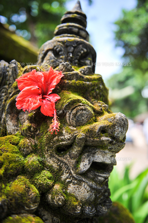 バリ島の石像の写真素材 [FYI00566974]