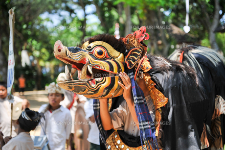 バリ島の伝統舞踊の写真素材 [FYI00567027]