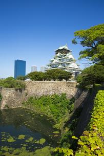 大阪城の写真素材 [FYI00569163]