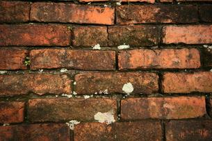 ビンテージなレンガの壁|グラフィック素材の写真素材 [FYI00569259]