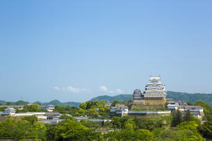新緑の姫路城の写真素材 [FYI00569330]