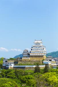 新緑の姫路城の写真素材 [FYI00569331]