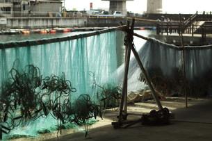 伊勢エビ漁の漁網の写真素材 [FYI00569443]