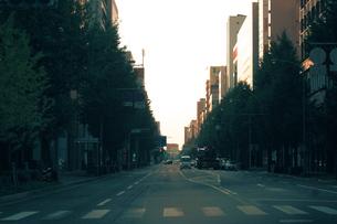 早朝の大通り…の写真素材 [FYI00569464]