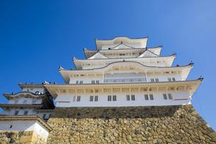 姫路城の写真素材 [FYI00571561]