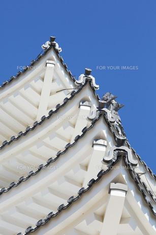 修復後の姫路城の写真素材 [FYI00571566]
