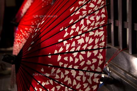 和傘の写真素材 [FYI00571633]