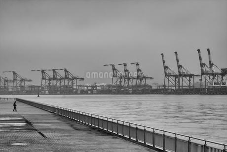 埠頭の写真素材 [FYI00571762]
