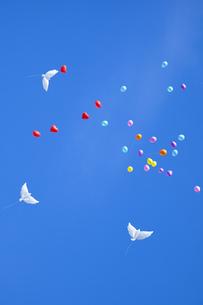 舞い上がる風船の写真素材 [FYI00571926]